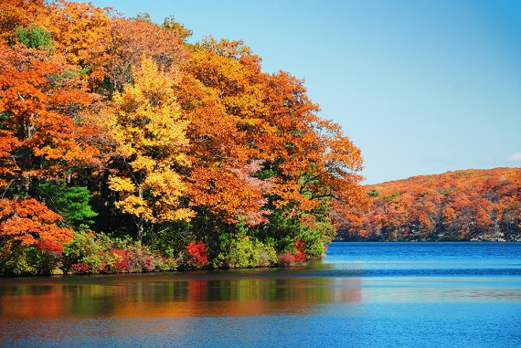 fall-foliage-planner-find-the-best-times-and-places-to-enjoy-the-season